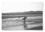 Poster Surfare på Strand