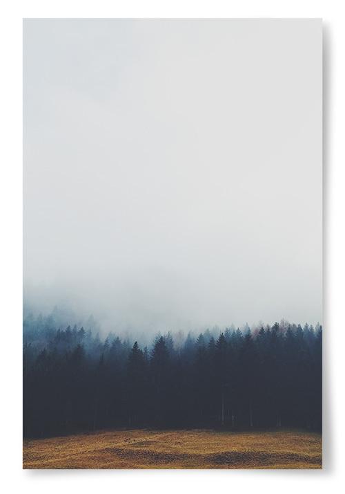 Poster Äng, Skog och Dimma