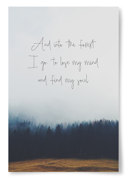 "Poster ""And into the forest I go..."""