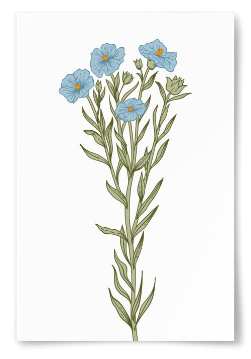 Poster Blå Blommor