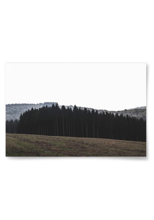 Poster Skogskant