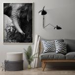 Poster Elefant som Leker