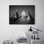 Poster Flodhästar