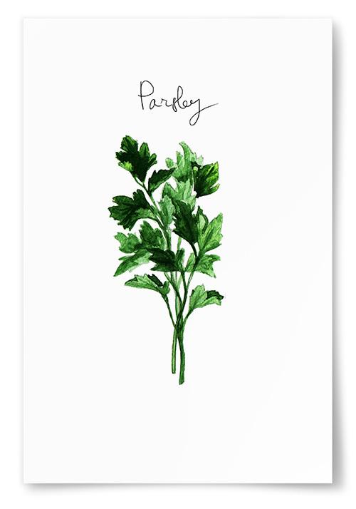 Poster Persilja