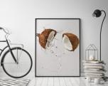 Poster Kokosnöt