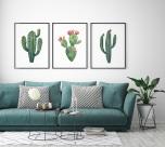 Poster Kaktus Akvarell No.3