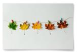 Poster Löv Årstider