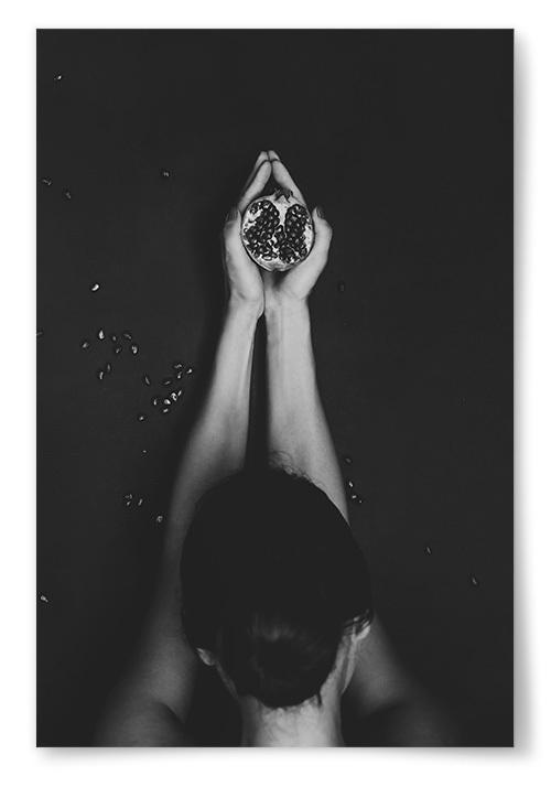 Poster Granatäpple Svartvit