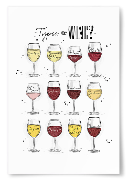 Poster Types Of Wine