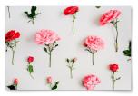 Poster Rosa Blommor Horisontell