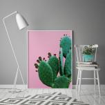 Poster Kaktus Rosa Bakgrund