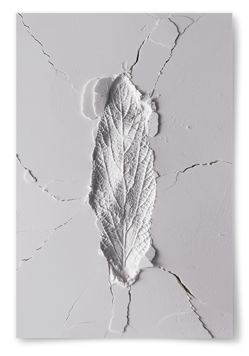 Poster Löv Avtryck No2