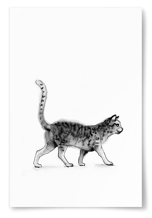 Poster Katt Akvarell