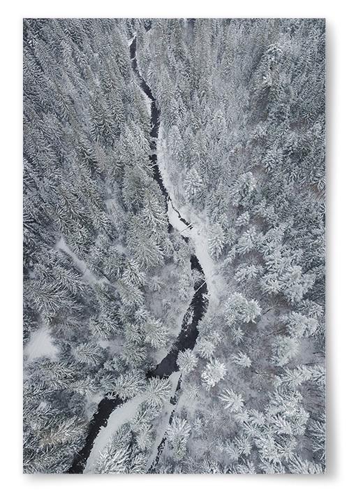 Poster Flygfoto Vinter