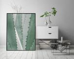 Poster Taggig Växt Närbild