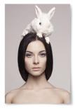Poster Hare på Kvinnans Huvud